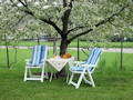 What is more pleasing than a break under the shadow of a flowering tree?